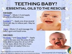 Essential Oils for teething - Young Living Clove, Exodus, Thieves Essential Oils for Teething Baby ~ Deep Relief, PanAway for Child Teething Baby Essential Oils, Essential Oils For Babies, Yl Essential Oils, Therapeutic Grade Essential Oils, Young Living Essential Oils, Yl Oils, Young Living Oils, Thieves Cleaner, Natural Healing