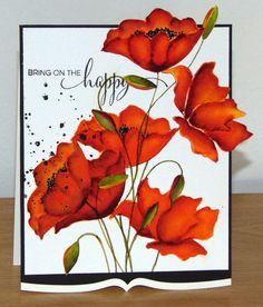Poppies de mon coeur 3 002 | Flickr - Photo Sharing!