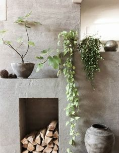 Biophilic design: plants in the living room to decorate a fireplace