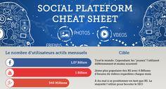 Infographie : Cartographie des réseaux sociaux ( Version Française 2014)