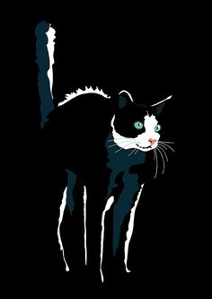 "iconoclassic: "" Halloween cat (by Sebastiano Ranchetti) """