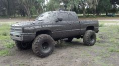 somethin bout a truck....covered in mud ;)