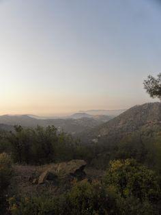 lyhyt matka luonto: Tämän kypros luonto