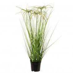 Intratuin kunstplant Papyrus D 40 H 60 cm D 40, Herbs, Plants, Water, Products, Gripe Water, Herb, Plant, Aqua