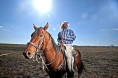 """In the upcoming documentary """"Forgotten Cowboys,"""" British photographer John Ferguson and filmmaker Gregg McDonald travel down south to explore the rich American history of black cowboys that Hollywood forgot. (Photographs by John Ferguson) Cowboys Today, Real Cowboys, The Great Migration, Equestrian Chic, Black Cowboys, Black African American, Down South, Cowboy And Cowgirl, Black History"""