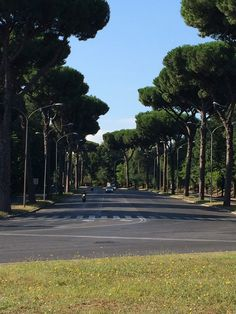 An empty street in Rome on one of the last days of summer. #RomeStreetGreen