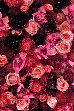 Blog | Flowerona - Part 70