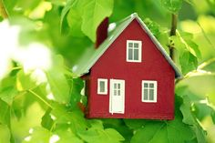 Mary Cordaro's Healthy & Green - Safe Homes for Healthy, Happy Families.  I'm interested in looking into this blog, it might be a great resource.