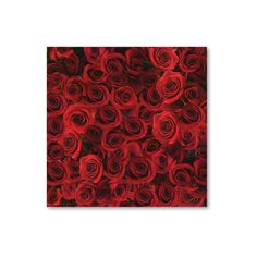 Roses of Red Scrapbook Paper ($8.88) ❤ liked on Polyvore featuring backgrounds, flowers, photos and pictures