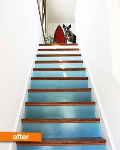 Before & After: Amy's Stairway to Heaven Converting old stairs to a beautiful wave! Painted Staircases, Painted Stairs, Spiral Staircases, Attic Stairs, House Stairs, Staircase Pictures, Staircase Ideas, Ombre Paint, Stairway Decorating