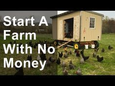 Quit Your Job and Become a Farmer. 7 Small Farm Ideas, from Organic Farming to Chickens & Goats. - YouTube