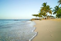 If you fly to the end of the chain of islands in the Caribbean, you'll find the beautiful country of Trinidad and Tobago. While the more southern Trinidad is the larger and more populous of the two islands, Tobago is…Read more › Danzig, Hotels, The Beautiful Country, Romantic Vacations, Honeymoon Destinations, Beautiful Beaches, Trinidad, Caribbean, Italy