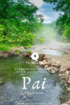 A travel itinerary with a list of best things to do in Pai, Thailand with places like waterfalls, hot springs, Pai canyon with the best vegan food in Thailand. Pai Thailand, Pattaya Thailand, Thailand Travel, Beautiful Places To Visit, Places To See, Stuff To Do, Things To Do, Marine Conservation, Krabi