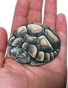 Turtle Painted Rocks, Painted Garden Rocks, Painted Rock Animals, Painted Rocks Craft, Rock Painting Patterns, Rock Painting Designs, Pebble Pictures, Stone Pictures, Cute Tortoise