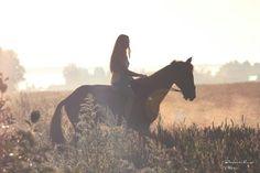 Летнее поле_знойный день_верхом на лошади