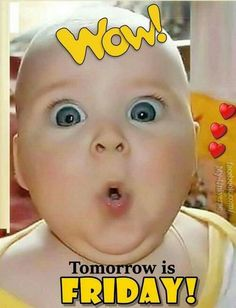 Happy Thursday Quotes, Thursday Humor, Its Friday Quotes, Friday Memes, Friday Sayings, Friday Morning Quotes, Funny Friday, Tomorrow Is Friday, Good Morning Handsome