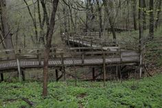 Nature hikes at Fontenelle Forest | Flickr - Photo Sharing!