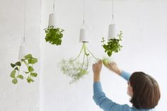 Bei Greenbop haben wir den Sky Planter entdeckt. Hiermit offenbart sich eine neue Idee der Raumgestaltung, denn Pflanzen werden in über Kopf hängenden Töpfen aufbewahrt.https://www.homify.de/ideenbuecher/36415/haengende-gaerten-10-geniale-ideen