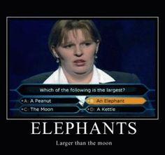 Ahaha, elephants are now larger than the moon!