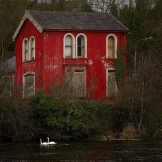 Abandoned home... how could anyone abandon this cute red house in the woods?!