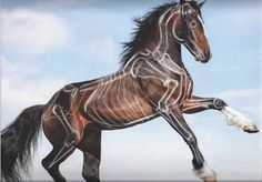 Joe Weatherly Fine Art