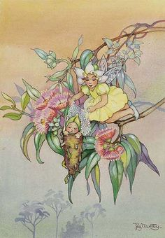 Fairy Story by Peg Maltby. - Courtesy of Lawson~Menzies (now trading as Menzies) © Peg Maltby or assignee Vintage Fairies, Fairytale Art, Beautiful Fairies, Flower Fairies, Fairy Art, Magical Creatures, Faeries, Illustration Art, Food Illustrations