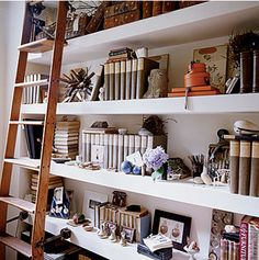 Library Ladder, extra thick shelving