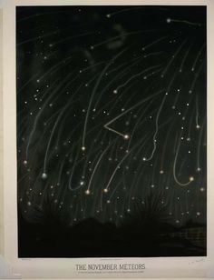 November Meteors by E.L. Trouvelot
