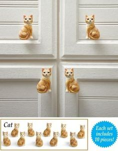 Cat Care Tips Cat Drawer Pulls 10 Pieces - Cat Drawer Pulls 10 Pieces Cat Lover Gifts, Cat Gifts, Cat Lovers, Crazy Cat Lady, Crazy Cats, I Love Cats, Cool Cats, Collections Etc, Cat Care Tips
