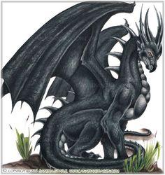 Image:Dragon furieux.jpg