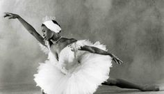 Before Misty Copeland, There Was Lauren Anderson