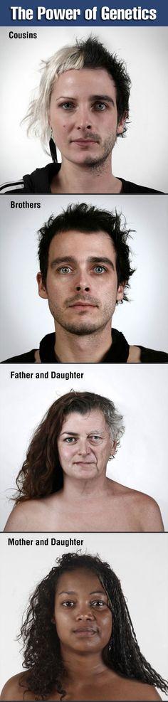 The Power of Genetics