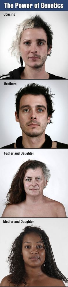 The Power of Genetics (click to enlarge for photos. These are amazing)