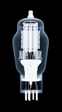 Nick Veasey's x-ray photography