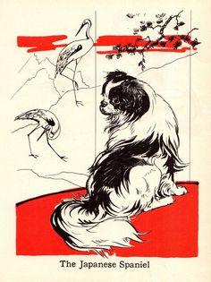 Japanese Chin, Japanese Art, Vintage Japanese, Dog Artwork, Cat Art Print, Dog Books, Art Birthday, Spaniel Dog, Vintage Dog