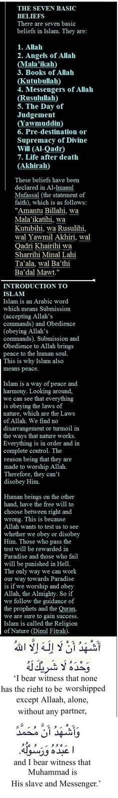 What is Islam, Muslim religion believe & its facts about? Al-Islam is a heaven-religion's & it is meant for the humankind to Success in world and hereafter. Muslim Religion, Islam Muslim, What Is Islam, Islamic Information, All About Islam, Life Quotes, Faith Quotes, Islamic Quotes, Quran
