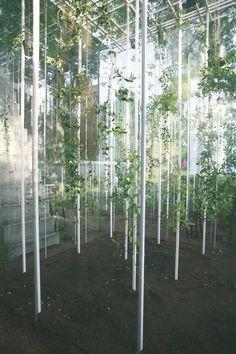 Junya Ishigami | Japanese Pavilion | Venice Architecture Biennale 08