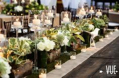 amazing centerpieces