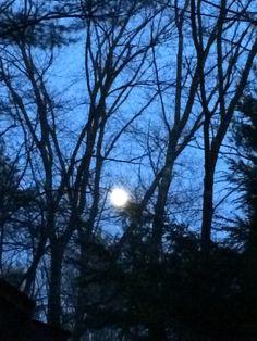 Full Moon May 2015