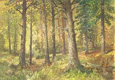 Konstanty MACKIEWICZ ,Las , olej, płótno, 66 x 93 cm