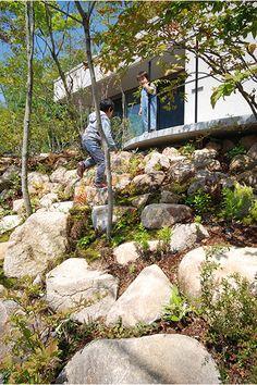Stepping Stones, Garden Design, Sidewalk, Home And Garden, Exterior, Landscape, Architecture, Outdoor Decor, Plants