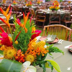 Protea, Heleconia, Red Ginger, Orchids, Beehive Awapuhi