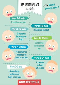 Educational infographic: Infographics: different phases of the child – Newborn Baby Massage First Baby, Mom And Baby, Massage Bebe, Early Pregnancy Signs, Baby Journal, Baby Blog, Baby Health, Baby Development, Baby Wraps