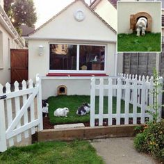 A bunny door to an outside play area!