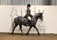 Topthorn Showing Show 25th May 2014