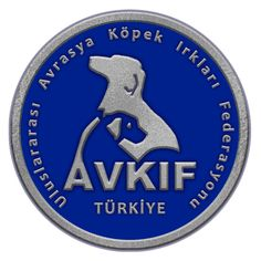 avkif-logo-kare Fallout Vault, Logos, Fictional Characters, Logo, A Logo, Fantasy Characters