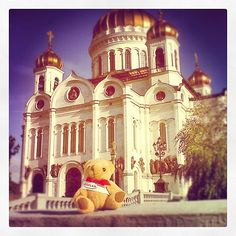 #Kaplanbear soaking up the last of the #Autumn #sunshine outside the #Cathedral of Christ the Saviour, largest #Russian #Orthodox church in #Moscow, #Kropotkinskaya