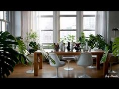 Plants and Greenery in Your Interior Design - http://news.gardencentreshopping.co.uk/garden-furniture/plants-and-greenery-in-your-interior-design/