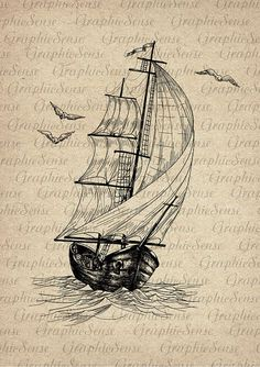 Old Sailing Ship and Seagulls