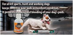 Dog Pads, Working Dogs, Paw Pad, Your Dog, Holland, Sports, Healing, Handmade, The Nederlands